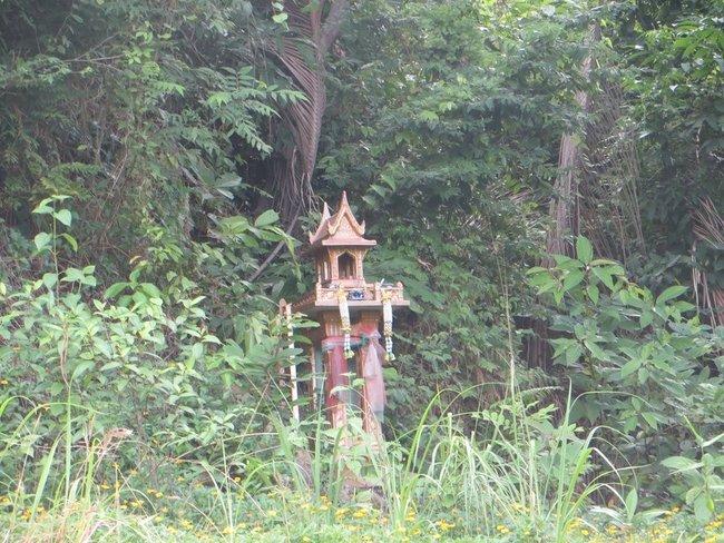 домик духов в кустах