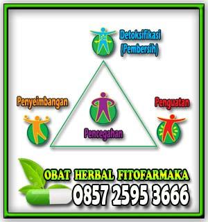 daftar penyakit dan solusinya, kombinasi pengobatan obat herbal fitofarmaka