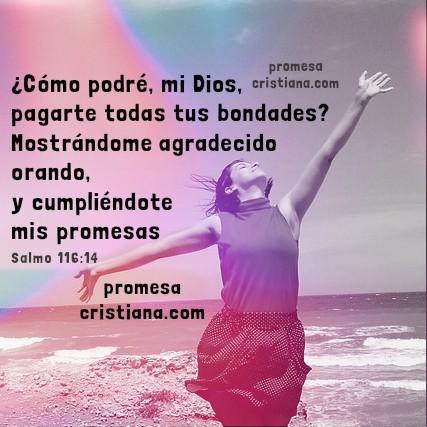 Frases cristianas con imágenes de buenas noches y versículo para dormir, mensajes cristianos con promesa, Promesa a Dios.