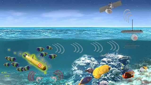 us-darpa-hijkacking-sea-creatures-to-spy-enemy-submarines-and-identify-activities
