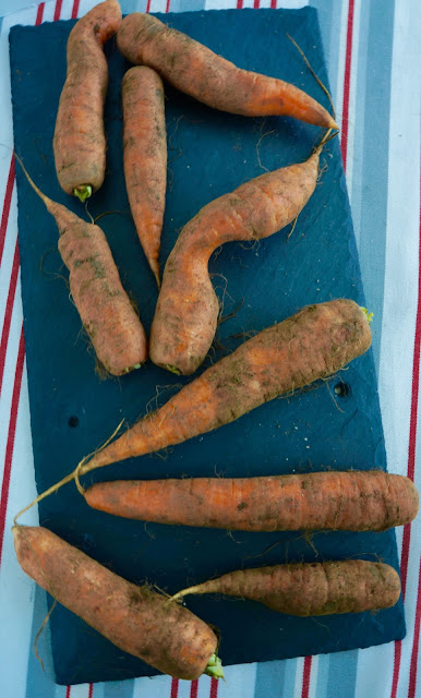 Fanny Cradock Carrot Salad