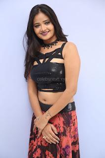 Shriya Vyas in a Tight Backless Sleeveless Crop top and Skirt 170.JPG