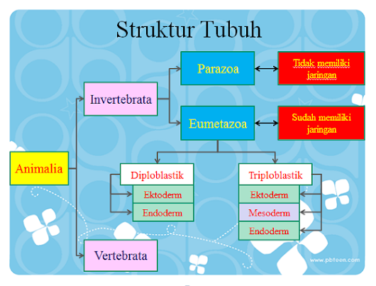 "Powerpoint Biologi ""Kingdom Animalia"