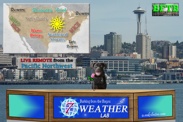BFTB NETWoof News' Paisley the Weather Lab give her weekly forecast