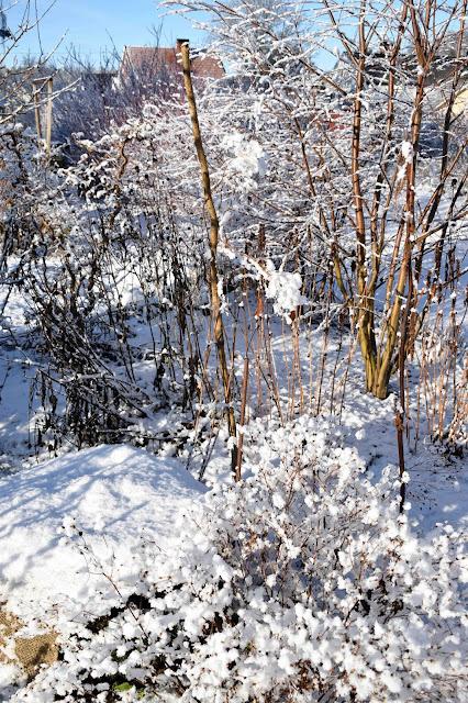 Rabatt i vinterskrud