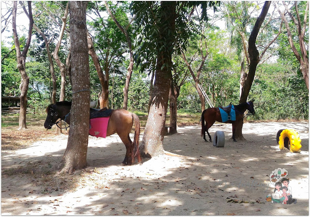 Horseback Riding at The Fun Farm at Sta. Elena