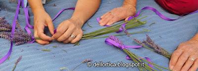 rose orto ortica lavanda iperico del giardino visitabile della fattoria didattica dell ortica a Savigno Valsamoggia Bologna vicino Zocca nell Appennino