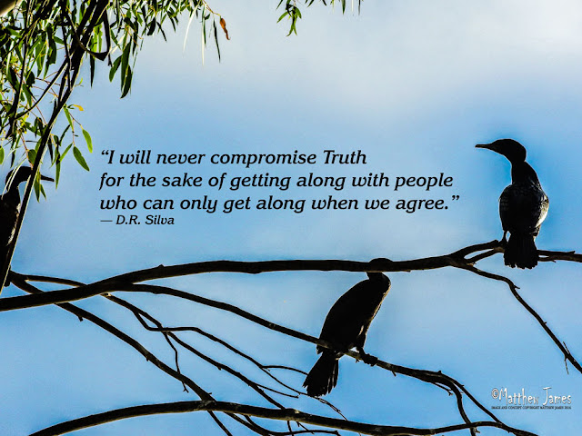 'I will never compromise truth for the sake of getting along with people who can only get along when we agree' - D.R.Silva