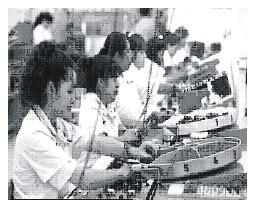 Kegiatan Ekonomi Negara Meksiko
