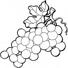 Coloring Pages Leaves: grape leaves coloring pages