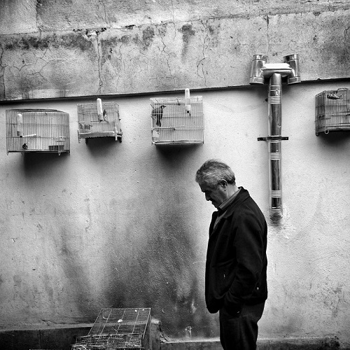 "Foto por Ako Salemi - A man sells birds in the cages - serie ""Tehran City of Hope and Despair"" 