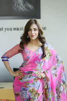 Actress Angela Krislinzki in Pink Saree Blouse Exclusive Pics March 2017 ~  114.JPG