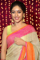 Anu Emanuel Looks Super Cute in Saree ~  Exclusive Pics 055.JPG