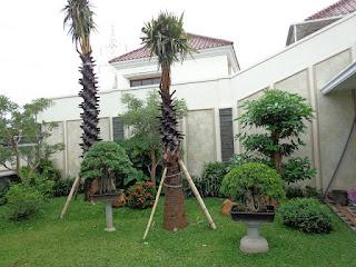 Taman dengan pohon peneduh