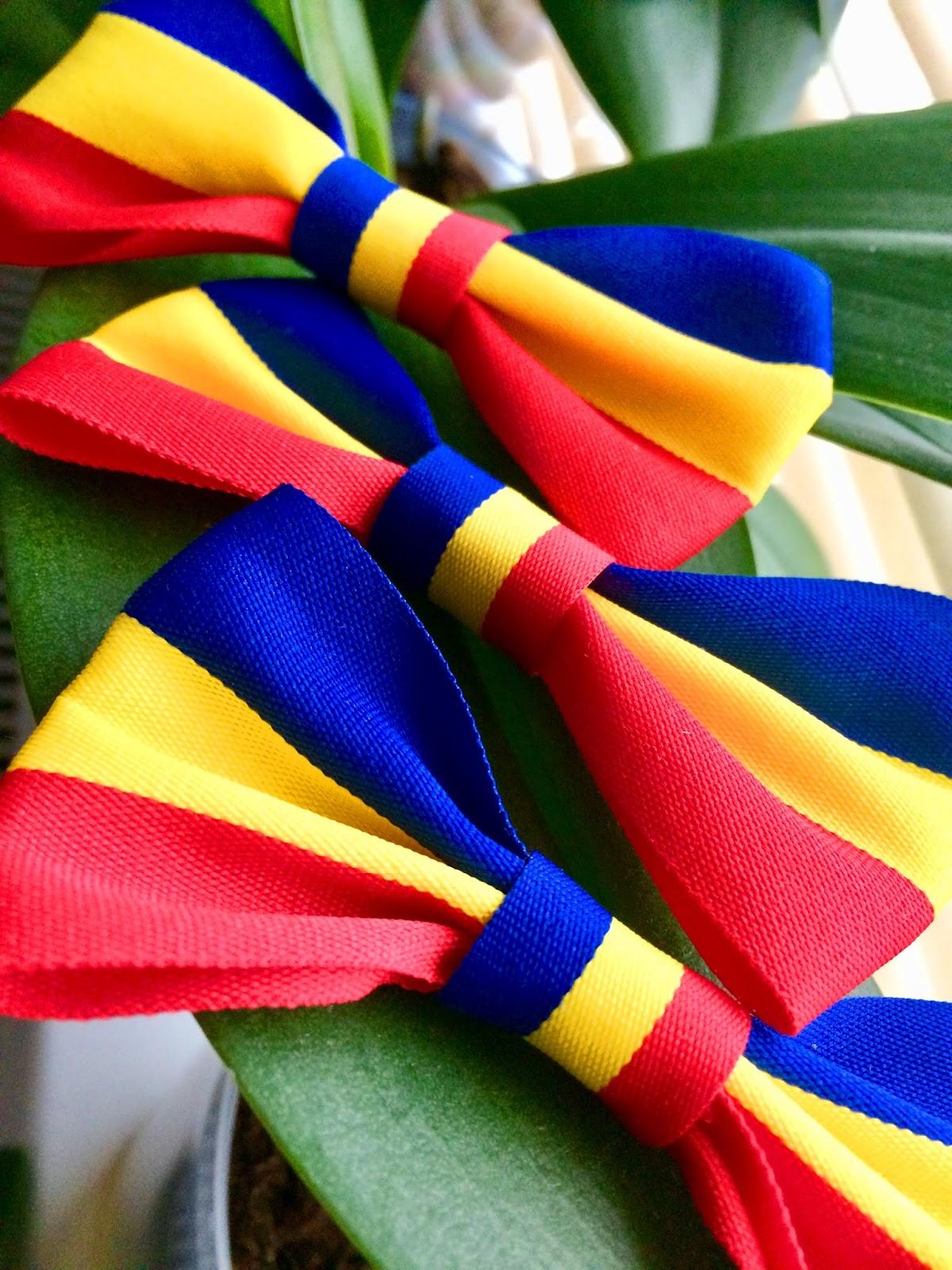 Fundițe pentru piept și papioane tricolore