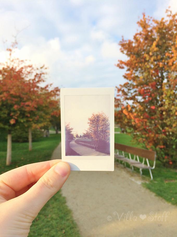 Hamburg mit Kindern | Herbst im Lohsepark
