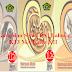 Download Buku Pegangan Guru MA Mapel PAI Bahasa Arab K2013 ...