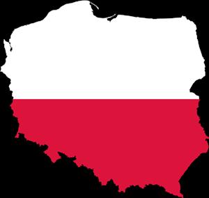 Mapa satelitarna Polski