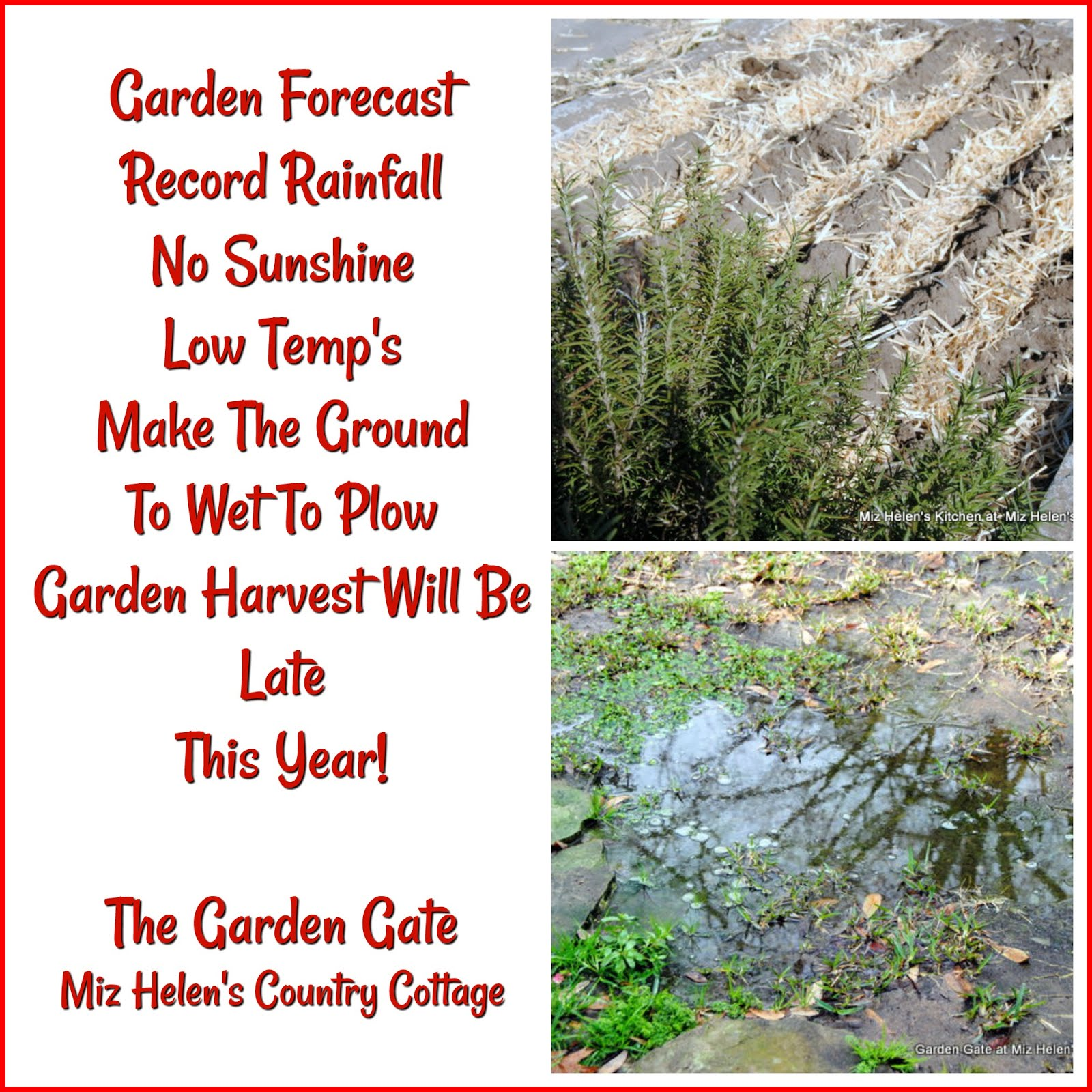 Garden Forecast: To Wet To Plow