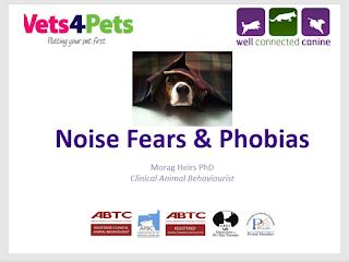 https://wellconnectedcanine.teachable.com/p/noise-fears-and-phobias-a-practical-seminar/?fbclid=IwAR1_PwcPzcZuB6idJMcmOEI6P6INC_lcXKY-0v3PyxraHECyu6hRZ8Qkqx0
