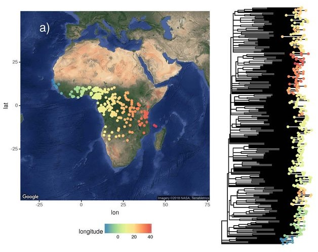 Global language diversity reflects the natural environment