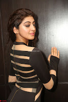 Pranitha Subhash in a skin tight backless brown gown at 64th Jio Filmfare Awards South ~  Exclusive 114.JPG
