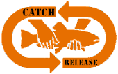 CATCH & RELEASE