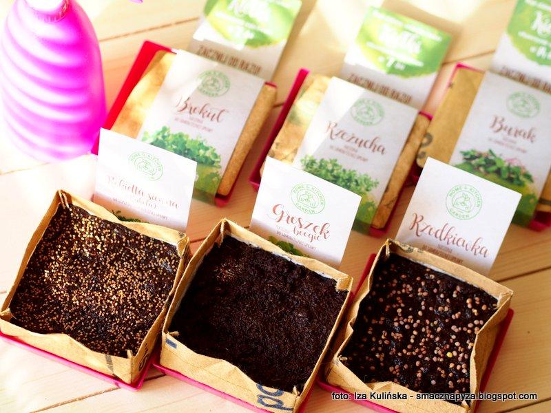 hodowla kielkow, domowy ogrodek, ogrod w domu, domowa uprawa mikrowarzyw, rosliny jadalne, zielenina na parapecie