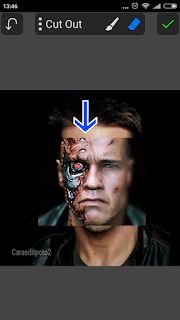 Edit Foto Face Terminator Picsay Pro - Android