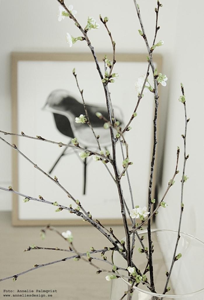 kvist, kvistar, ta in från naturen, poster, posters, print, prints, konsttryck, tavla, tavlor, annelies design, anneliesdesign, webbutik, webbutiker, webshop,inredning, stol, svart och vitt, svartvit, svartvita, nettbutikk, plakat, plakater, nettbutikker, blommor, knoppar, knopp
