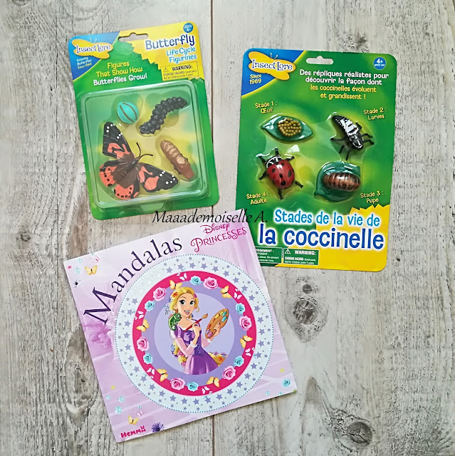 > Mandalas Disney Princesses  > Cycle de vie de la coccinelle  > Cycle de vie du papillon