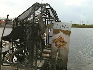 airboat named hog wild