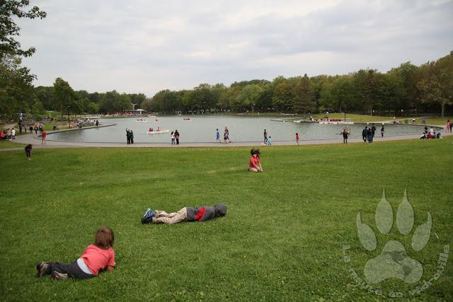Canada-Quebec-Montreal-parc-mont-royal-lac-castors