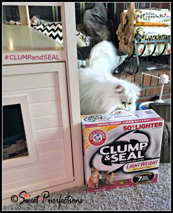 Brulee smelling #CLUMPandSEAL