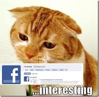 как создать страницу(Фан пэйдж) на Facebook