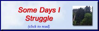 http://mindbodythoughts.blogspot.com/2016/11/some-days-i-struggle.html