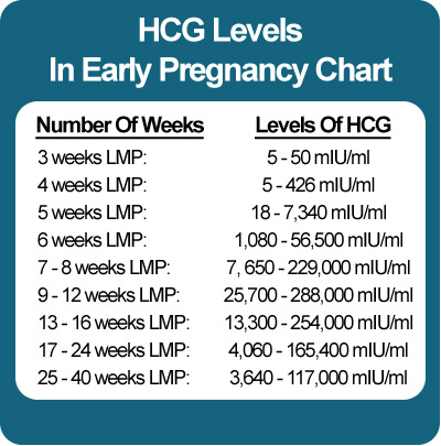 A Pursuit to Perpetuate My Genes: Can the level of HCG in