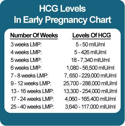 Quantitative hCG Blood Pregnancy Test Procedure and Results
