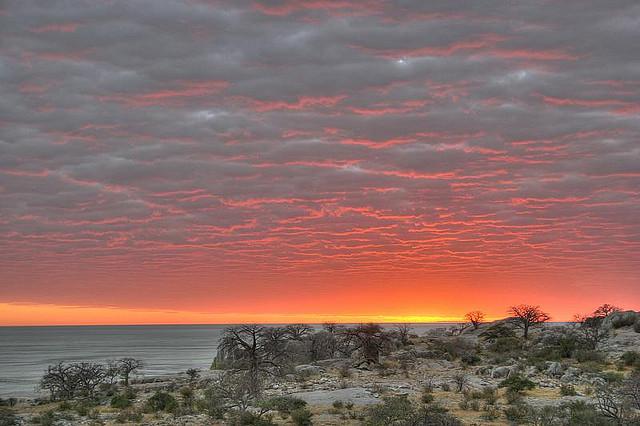 Kubu Island,Botswana