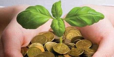 Cara investasi cara klasik dan cara investasi berkebun emas