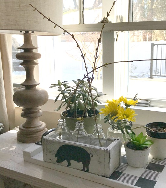 DIY Forsythia Bud Vase with farmhouse pig stencil