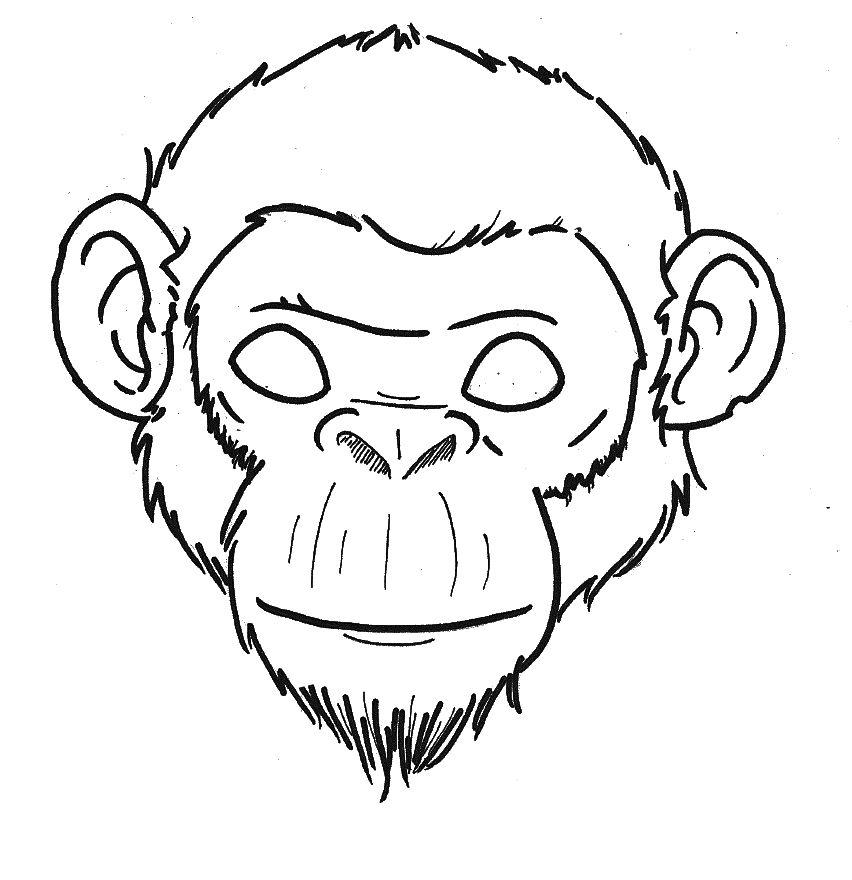photo relating to Printable Monkey Mask titled Monkey Mask Printable. Printable Animal Masks Craft Children