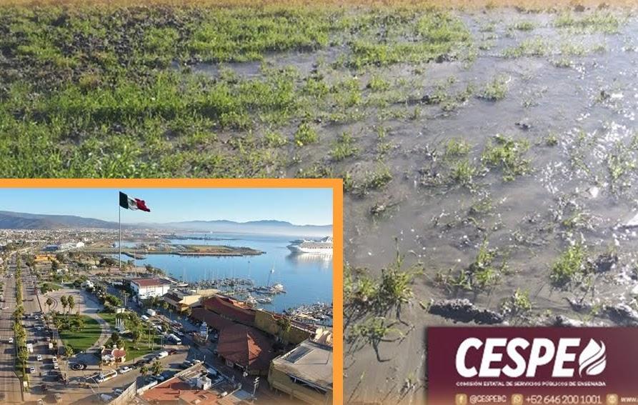 ciudad de Ensenada, Cespe, servicio de agua