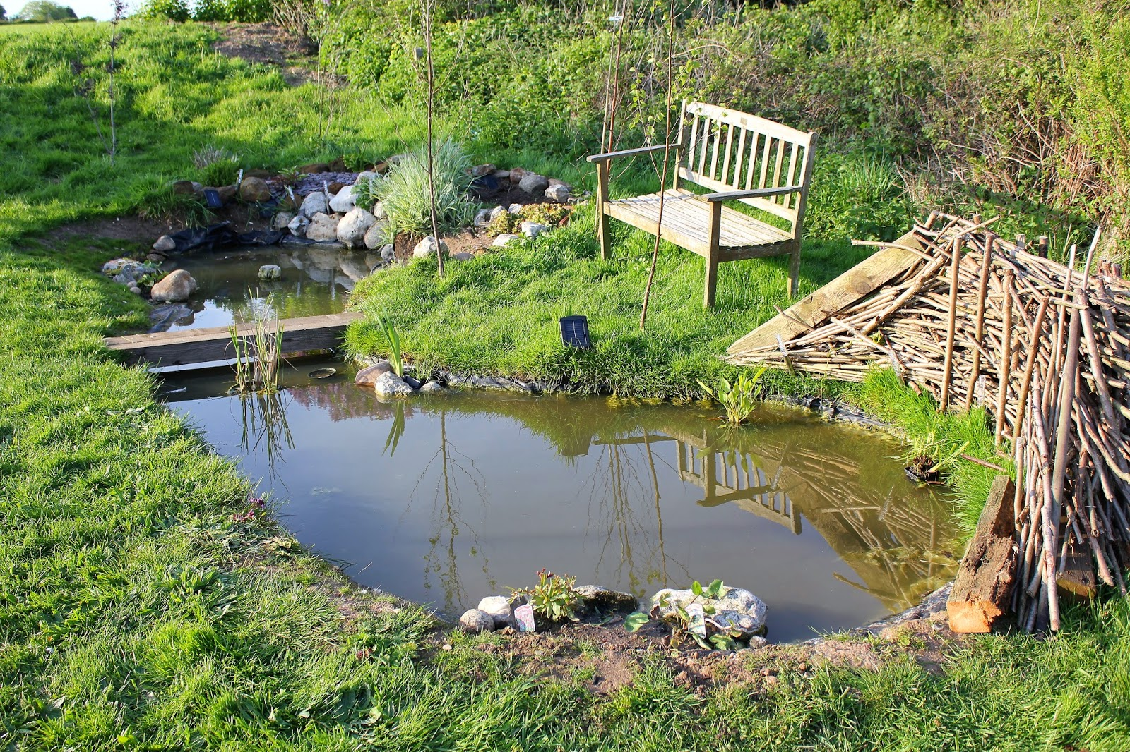 How to attract wildlife into the garden with a pond the for The backyard pond