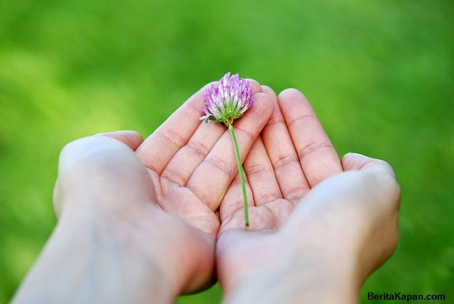 Cara Alami Kulit Tangan Halus dan Lembut