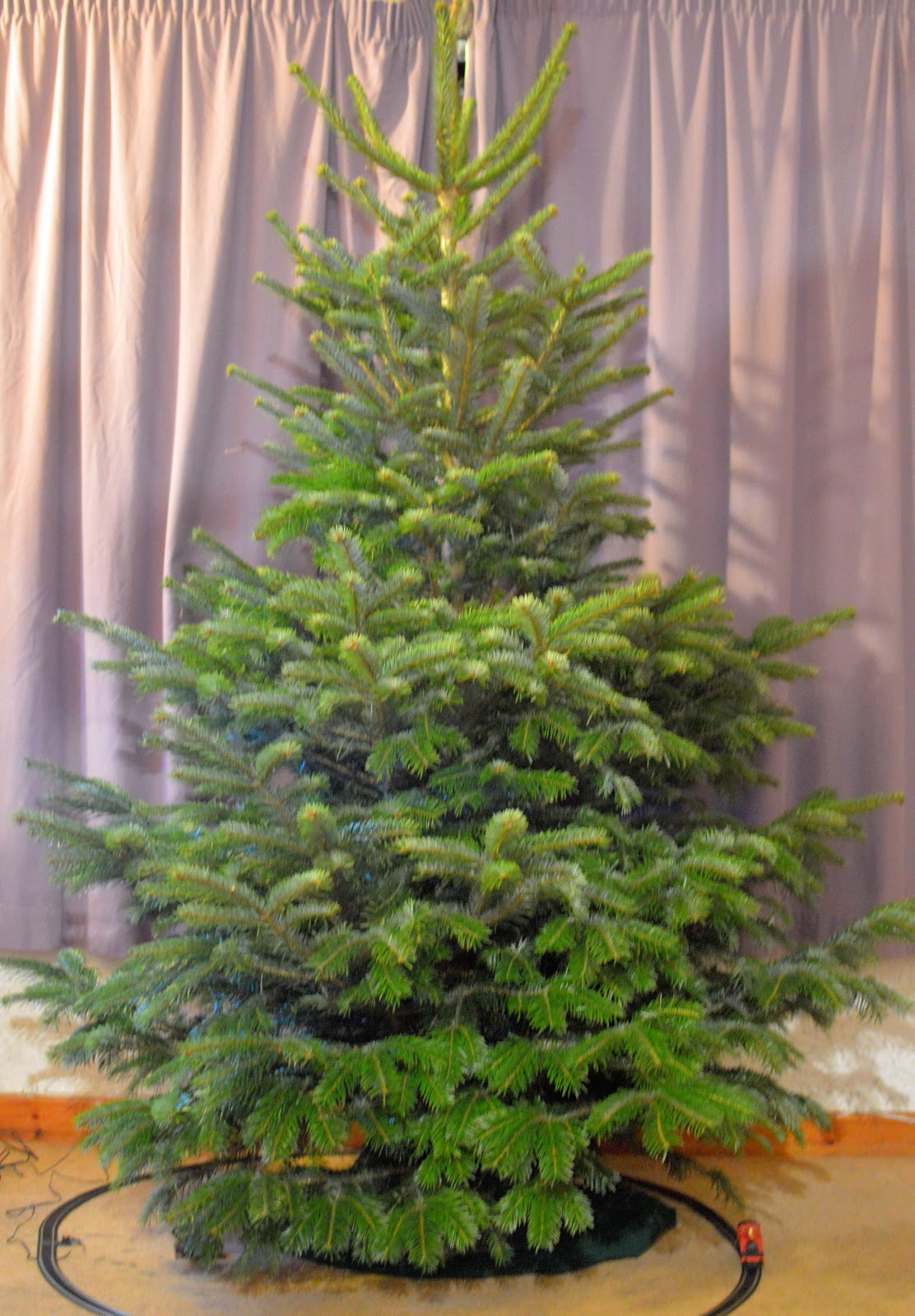 , Oh Christmas Tree, Oh Christmas Tree, How Lovely Are Your Branches?