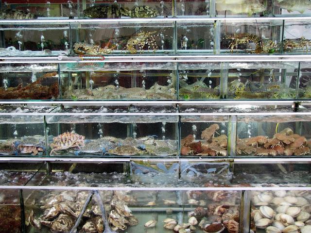 seafood market phu quoc vietnam