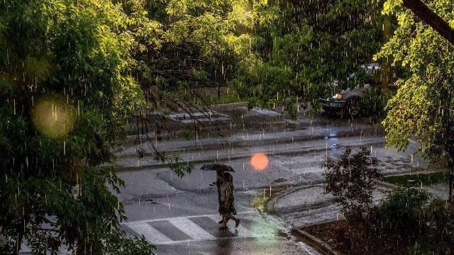 7 Dampak Hujan Asam yang Perlu Kita Waspadai