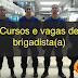 Cursos e vagas de brigadista em todo o brasil