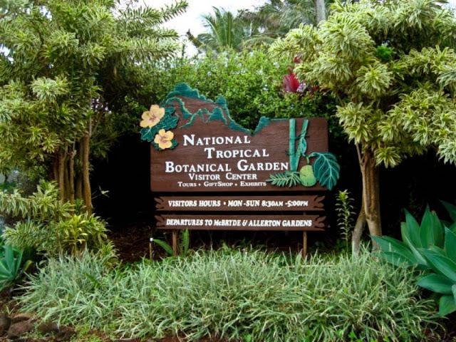 tropical garden of Lawai